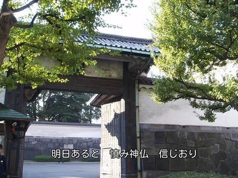 051122-59s 皇居.jpg
