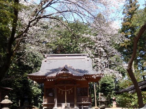 1-240412-17 高倉日枝神社.jpg