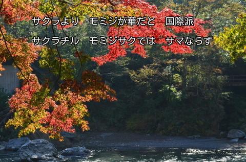 131106-18s 御岳渓谷.jpg
