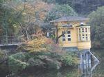 16112093 一昨年の鎌北湖のモミジ.jpg