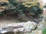 171125101 三波峡谷の秋.jpg