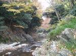 171125103 三波峡谷の秋.jpg