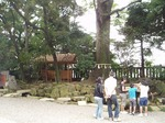 18092231 流し雛 氷川神社.jpg