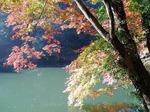 18112124 もみじ祭り 鎌北湖.jpg