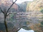 181215159 鎌北湖.jpg