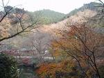 181215160 鎌北湖.jpg