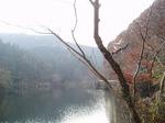 181215165 鎌北湖.jpg