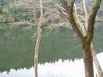 181215167 鎌北湖.jpg