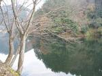 181215168 鎌北湖.jpg