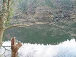 181215171 鎌北湖.jpg