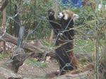 181216069 こども動物自然公園.jpg