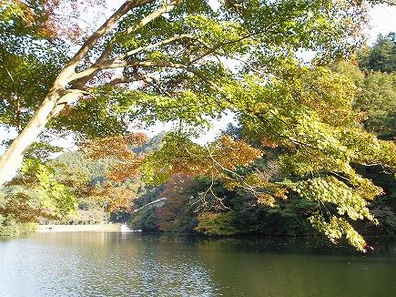 19111577 鎌北湖紅葉.jpg
