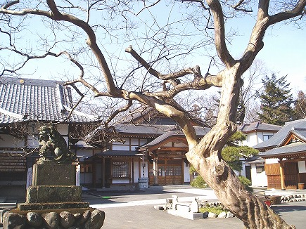 20021151 熊谷文殊寺.jpg