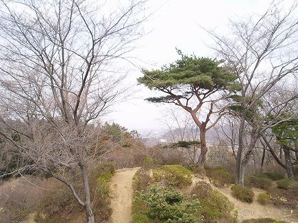 20031804 物見山眺望.jpg