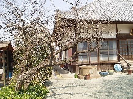 20032866 東松山慈眼寺.jpg