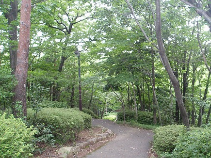 20061711 物見山公園.jpg
