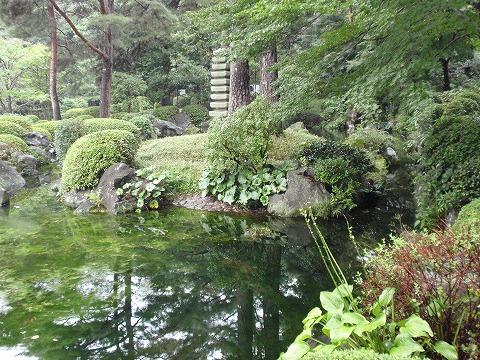 200930-12 大宮公園日本庭園.jpg
