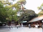 201021-62 明治神宮.jpg