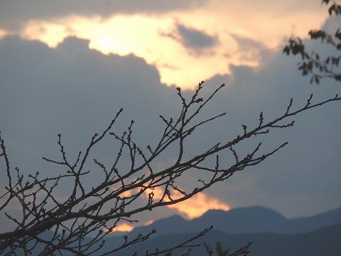 201029-62 夕日.jpg