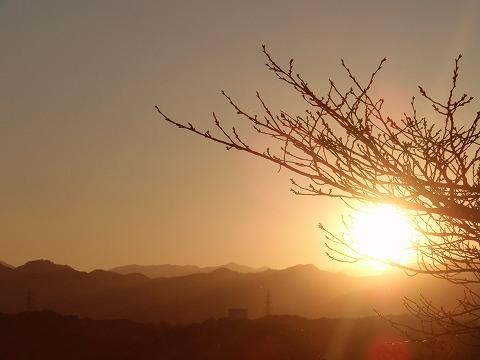 201101-08 木枯らし一号の夕日.jpg