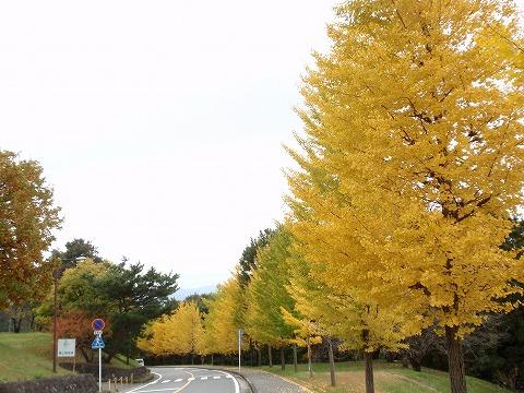 201112-34 東京電機大学.jpg