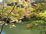 201113-45 鎌北湖.jpg