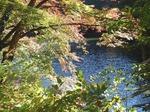 201113-54 鎌北湖.jpg