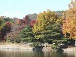 201114-60 八丁湖.jpg