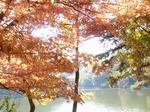 201114-76 八丁湖.jpg