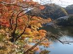201121-04 鎌北湖.jpg