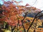 201121-07 鎌北湖.jpg