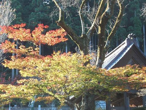 201121-47 霊山院.jpg