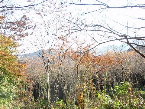 201121-49 都幾山からの外秩父.jpg