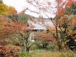 201125-42 龍隠寺.jpg