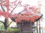 201128-24 能仁寺.jpg