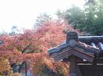 201128-57 能仁寺.jpg