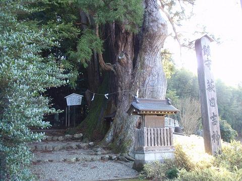 201212-50 萩日吉神社ときがわ町.jpg