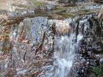 210212-06 宿谷の滝下流.jpg