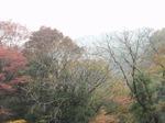 211117-28 三波峡谷.jpg