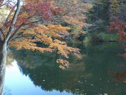 211125-38 鎌北湖.jpg