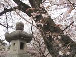 220404-67 高倉神社.jpg