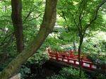 220602-19 椿山荘・橋.jpg