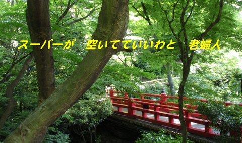 220602-19b 椿山荘.jpg