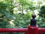 220602-24 椿山荘・橋.jpg