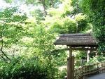 220602-31 椿山荘.jpg