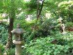 220602-32 椿山荘.jpg