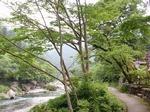 220611-23 御岳渓谷.jpg
