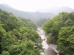 220611-31 御岳渓谷.jpg