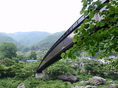 220611-41 橋・御岳渓谷.jpg