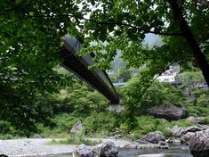 220611-42 橋・御岳渓谷.jpg